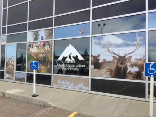 Alberta Conservation - Exterior Window Graphics